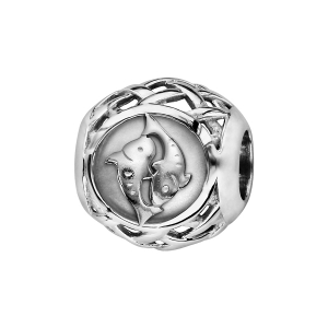 CHARMS COULISSANT ARGENT RHODIE ZODIAQUE POISSON